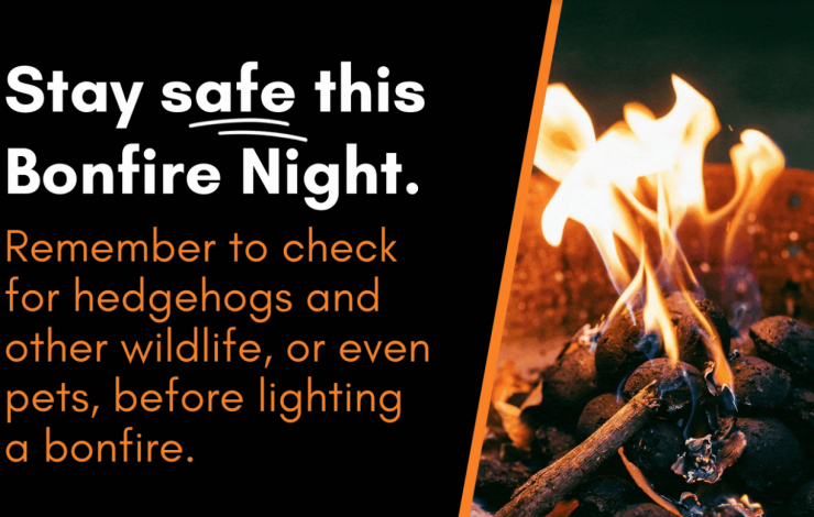 Essential fire safety tips for Bonfire Night 2020